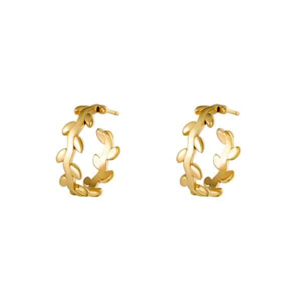 oorbel-goud-lauwerkrans